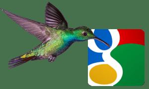 hummingbird-google